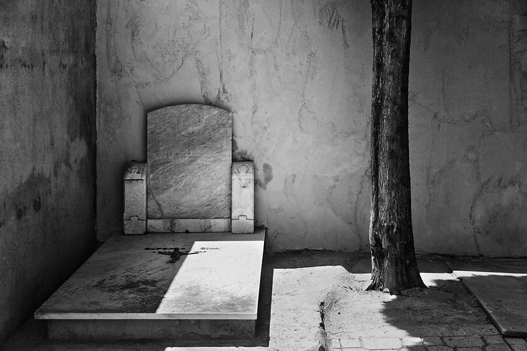 Friedhof (2014)